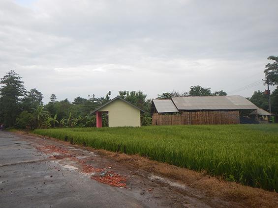 Lumbung Padi di Desa Jatisura.