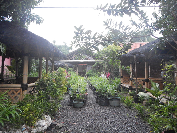 Saung Dusun Wates, tempat pelaksanaan workshop akumassa.