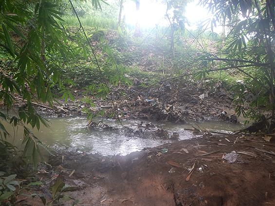 Penampakan dari salah satu sisi pinggir Sungai Ciranggon di hari ini.