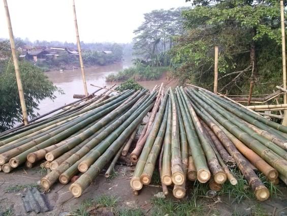 Bambu yang siap dibawa ke luar kota.